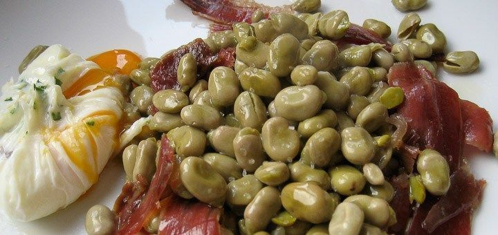 Common beans contain levodopa in its seeds and pods, but in low concentrations. This proportion is much higher in the buds. A serving of beans may accumulate as much levodopa as half a tablet of levodopa Sinemet.